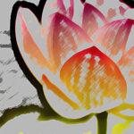 Mindfulness en chronische ziekte